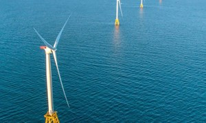 RODA launches offshore wind and fisheries research alliance