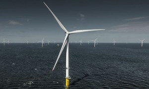 Wind can build-back better, industry leaders say
