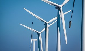 Vietnam must remove regulatory challenges to encourage wind energy