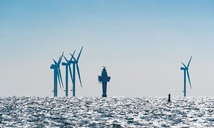 China drops electricity subsidy price for offshore wind power